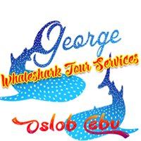 George Whalesharks Tour Services