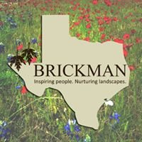 Brickman in Texas