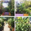 Growing4All - West Berkshire Mencap