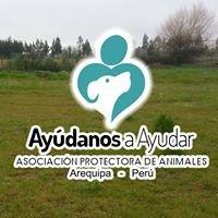 Albergue de los perros abandonados Arequipa