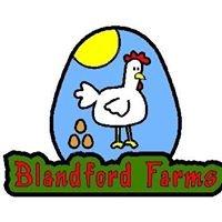 Blandford Farms