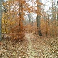 Lewis Morris County Park