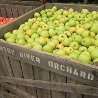 Thornton River Orchard & Market