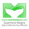 Mario's Tours