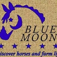 Blue Moon Stables