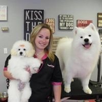 Pampered Paws Pet Salon