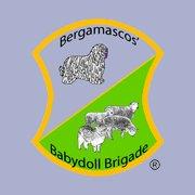Bergamascos' Babydoll Brigade, LLC