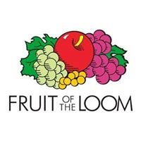 Fruit of The Loom Inc