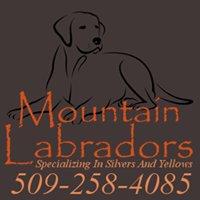 Mountain Labradors