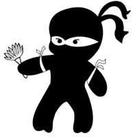Cleaning Ninjas