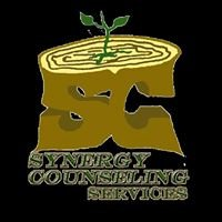 Synergy Counseling Services, LLC