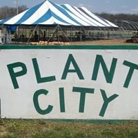 Plant City- Wilson's Lawn & Landscaping