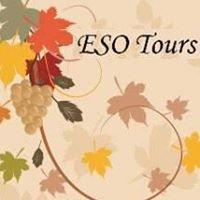 ESO Tours