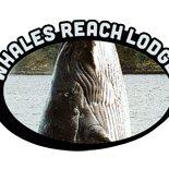 Whales Reach Lodge