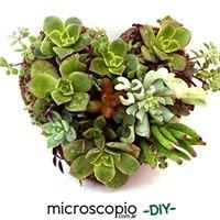 Microscopio Jardinería Sustentable