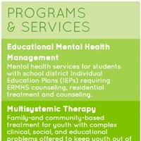 Community Options for Families and Youth (COFY)