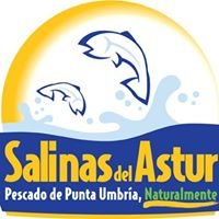 Salinas del Astur