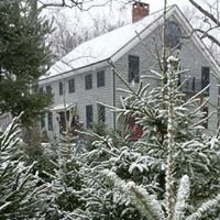 Stone Oak Tree Farm and Bed & Breakfast
