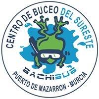Centro de Buceo del Sureste-Bachisub s.l