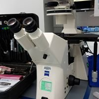 Quality Microscope Service