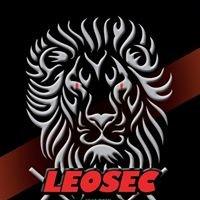 Leosec Security Solutions