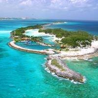 Blue Lagoon Island - Dolphin Encounters!