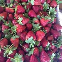 Cenla Produce Farms LLC
