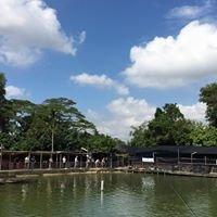 Auntie's Fishing Pond