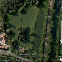 Delves fishing pond