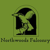 Northwoods Falconry