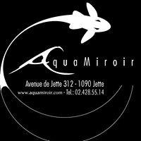 Aquamiroir
