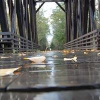 Dungeness River Bridge