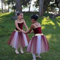 Academia de Ballet DanzArte