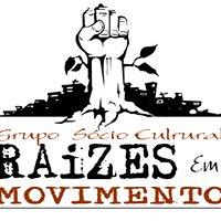 Instituto Raízes em Movimento