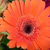 the friendly florist