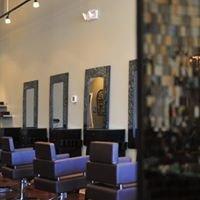 Lucid Salon