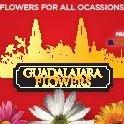Guadalajara Flowers