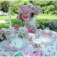Indigo Tea Market