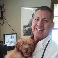 Camelback Animal Clinic