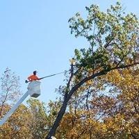 Harrison's Pro Tree Service LLC