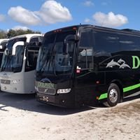 Dolphin Transportation Specialists, Naples