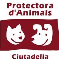 PROTECTORA D'ANIMALS DE CIUTADELLA