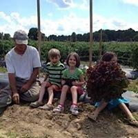 Millwood Farm Produce