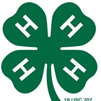 Barron County 4-H & Youth Horse Project