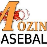 Mozingo Baseball