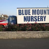 Blue Mount Nursery