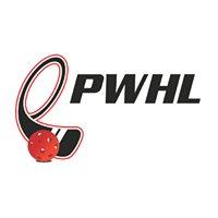 Ottawa Power Wheelchair Hockey League (OPWHL)
