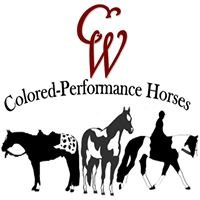CW Colored-Performance Horses Candi Anderson