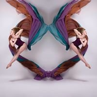 Dance Arts Academy