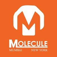 Molecule Communications Pvt Ltd.